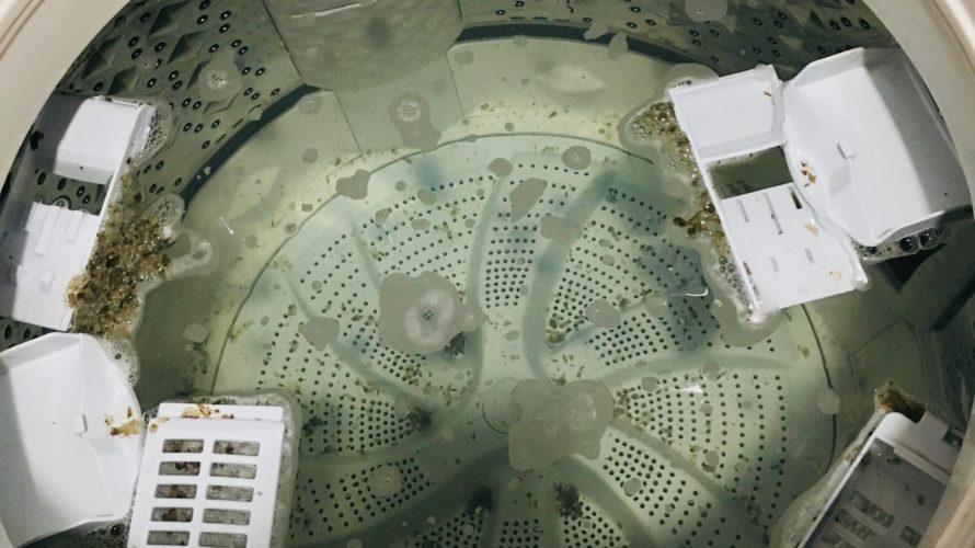 「半年放置で・・・」東芝洗濯機のオキシクリーンを使った槽洗浄手順