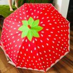 話題の可愛すぎるフルーツ柄の傘【3COINS】実際にさしてみた